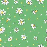 Modello floreale senza cuciture con i fiori della camomilla royalty illustrazione gratis