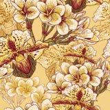 Modello floreale senza cuciture con i fiori esotici Fotografie Stock