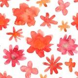 Modello floreale senza cuciture con il fiore disegnato a mano variopinto isolato Fotografia Stock
