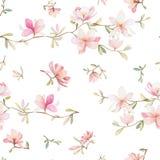 Modello floreale senza cuciture con le magnolie su un fondo bianco, acquerello Fotografia Stock Libera da Diritti