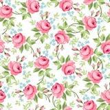 Modello floreale senza cuciture con le piccole rose rosse Immagini Stock