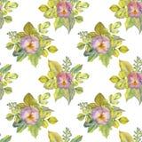 Modello floreale senza cuciture dell'acquerello royalty illustrazione gratis