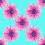 Modello floreale senza cuciture dell'acquerello illustrazione vettoriale