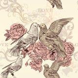 Modello floreale senza cuciture di bello vettore con le rose e gli uccelli illustrazione vettoriale