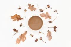 Modello, foglie, ghiande e caffè pallidi di autunno Fotografia Stock