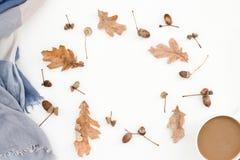 Modello, foglie, sciarpa e caffè di autunno Fotografia Stock