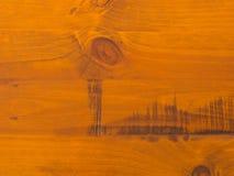Modello/fondo del legname del pino Fotografia Stock