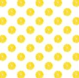 Modello fotografico del limone giallo fresco Immagini Stock Libere da Diritti