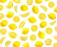 Modello fotografico del limone giallo fresco Immagine Stock
