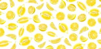 Modello fotografico del limone giallo fresco Fotografia Stock
