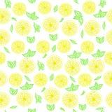 Modello fresco dei limoni Fotografia Stock Libera da Diritti