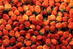 Modello fresco del fondo della fragola, azienda agricola del mercato della fragola, fragola di rossi carmini Fotografia Stock