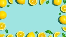 Modello fresco del limone Immagine Stock Libera da Diritti