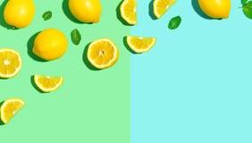 Modello fresco del limone Fotografia Stock