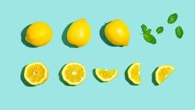 Modello fresco del limone Immagini Stock