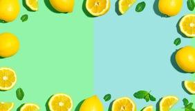 Modello fresco del limone Fotografia Stock Libera da Diritti