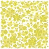 Modello giallo con i fiori allineati e colorati Fotografie Stock