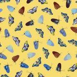 Modello giallo con la farfalla illustrazione vettoriale