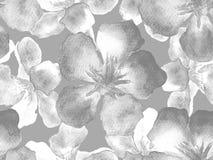 Modello hawaiano dell'acquerello Fotografie Stock Libere da Diritti