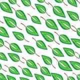 Modello infinito di vettore con le foglie Fotografia Stock