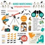 Modello infographic di bird-watching Immagini Stock Libere da Diritti