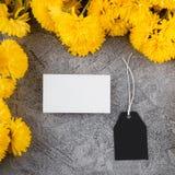 Modello marcante a caldo alla moda per la mostra dei vostri materiali illustrativi Disposizione sveglia su fondo strutturato grig fotografia stock