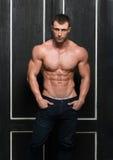 Modello maschio immagini stock