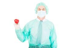 Modello maschio del cuore della tenuta di medico Fotografie Stock Libere da Diritti