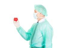 Modello maschio del cuore della tenuta di medico Immagine Stock Libera da Diritti