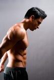 Modello maschio di forma fisica Immagini Stock