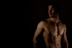 Modello maschio muscolare Immagine Stock