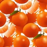 Modello maturo del mandarino di vettore Fotografie Stock Libere da Diritti