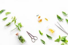 Modello medicinale dell'erba del raccolto Foglie, bottiglie e sciccors sul copyspace bianco di vista superiore del fondo Fotografia Stock Libera da Diritti