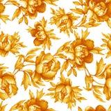 Modello monocromatico giallo senza cuciture floreale d'annata con le peonie di fioritura, su fondo bianco Illu disegnato a mano d Fotografia Stock Libera da Diritti
