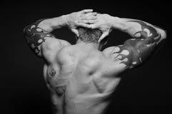 Modello muscoloso Immagine Stock