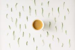 Modello naturale del caffè di mattina Disposizione piana Immagine Stock