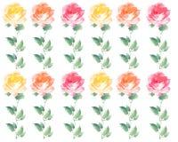 Modello Painterly di ripetizione della banda dei fiori del fiore di Rosa dell'acquerello Fotografia Stock