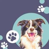 Modello per il deposito veterinario dell'animale domestico o della clinica Cane Fondo Fotografia Stock