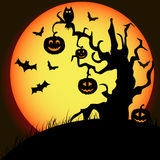 Modello per il manifesto di Halloween felice Fotografia Stock