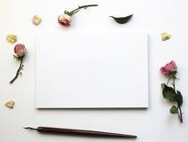 Modello per le presentazioni con le rose asciutte Fotografie Stock Libere da Diritti