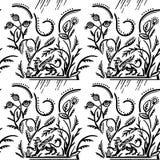 Modello piega con il grifone e le erbe Fotografia Stock