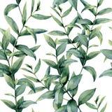 Modello realistico dell'eucalyptus dell'acquerello Ornamento senza cuciture floreale dipinto a mano isolato su fondo bianco nave