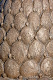 Modello in rilievo di Bas del cactus Fotografie Stock