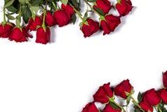 Modello romantico Struttura floreale fatta di belle grandi rose rosse su fondo bianco Spazio per il vostro testo Vista superiore Immagine Stock