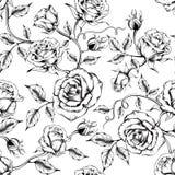 Modello rosa senza cuciture con i fiori di schizzo immagine stock