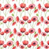 Modello rosso dei papaveri dell'acquerello illustrazione di stock