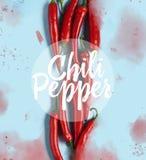 Modello rosso dei peperoncini di disposizione del piano immagine stock libera da diritti