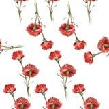 Modello rosso del garofano dell'acquerello Fotografie Stock Libere da Diritti