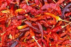 Modello rosso secco dei peperoncini rossi Fotografie Stock Libere da Diritti