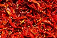 Modello rosso secco dei peperoncini rossi Immagini Stock